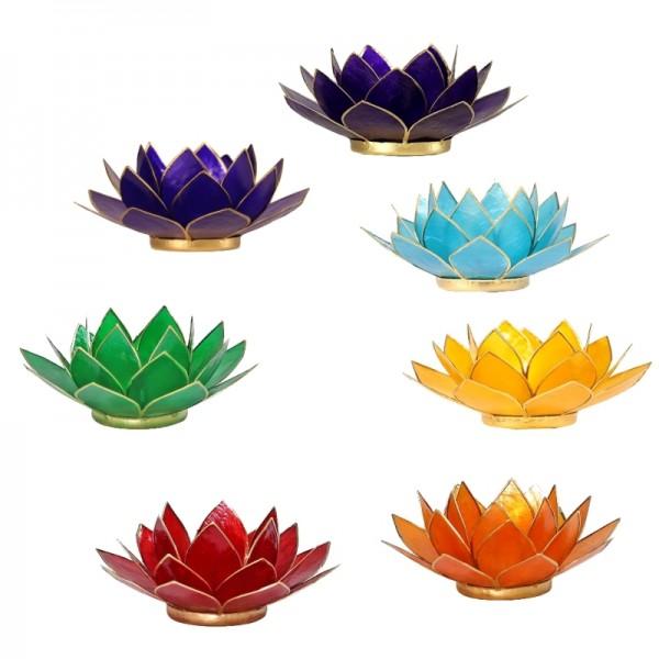 7 Teelichthalter aus Capiz Muscheln ca. 13,5 cm