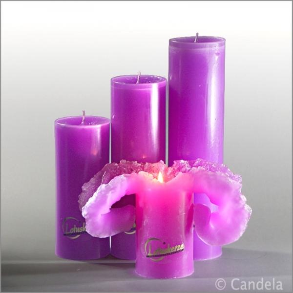 original lotuskerze purpur
