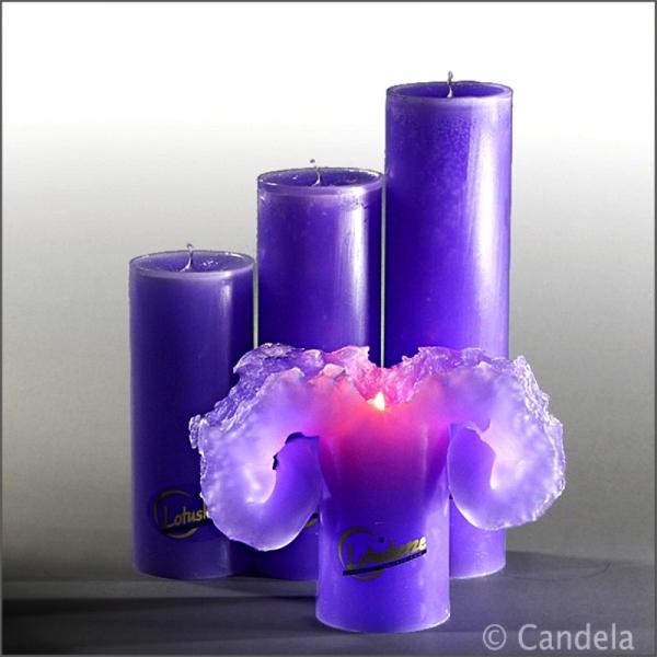 original lotuskerze violett lila