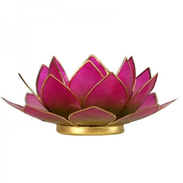 Lotus Teelichthalter purpur